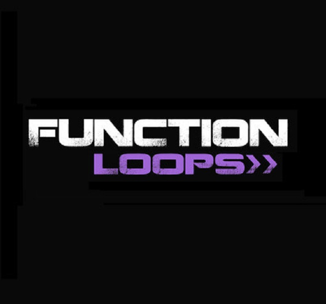function loops winter tech